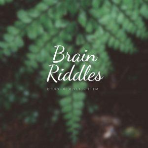 brain_riddles