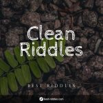clean_riddles