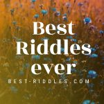 best_riddles_ever